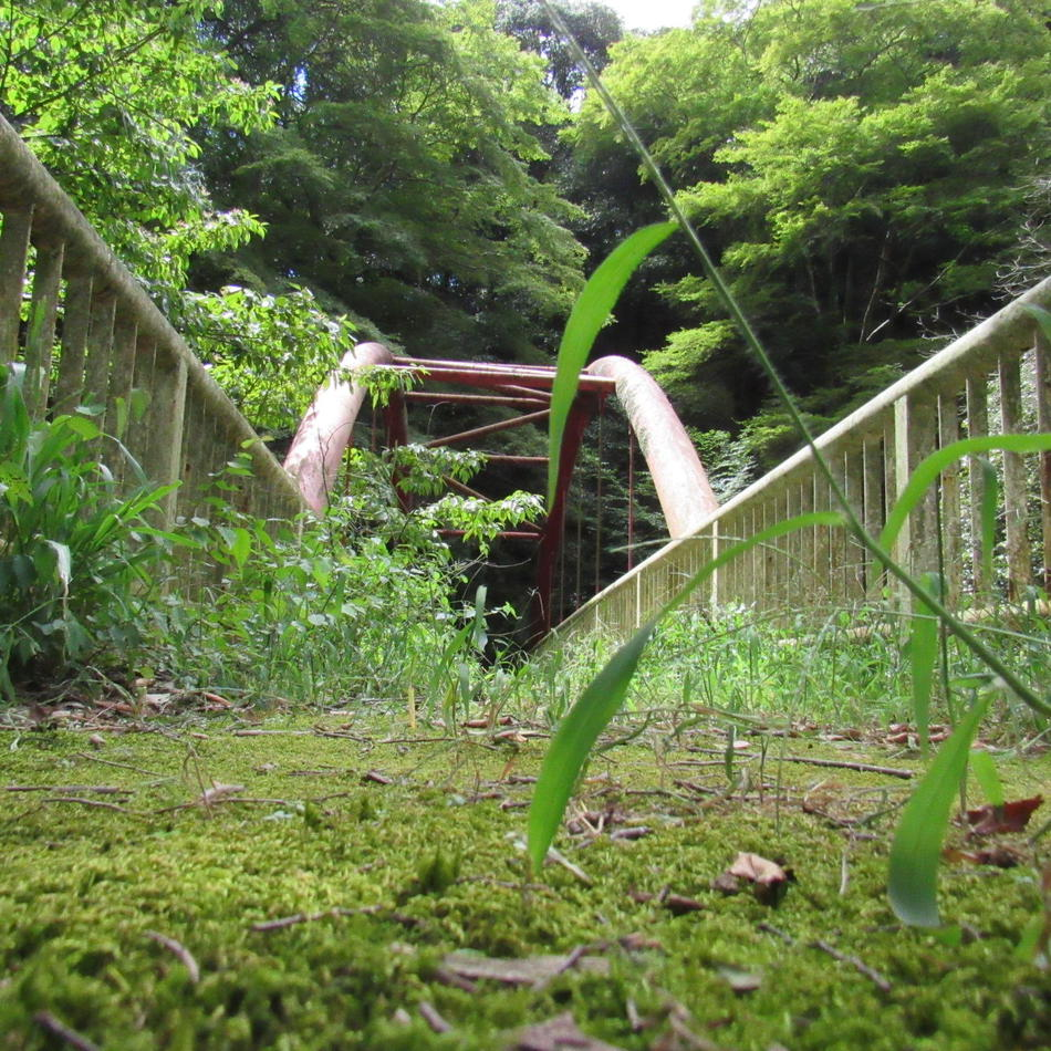 http://fujiwara-nh.or.jp/archives/30b661e69d2bb961e2a2e5f8fcd1bb82d48c119a.JPG