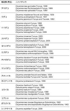 日本沿岸産の頭足類にみられるニハイチュウ類