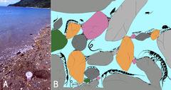 試料採集と間隙環境の概念図