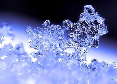 110.雪のひとひら.jpg