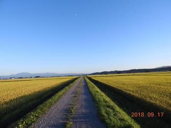 a139.美しい青空.JPG